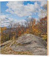 Autumn Above Eagle Bay Ny Wood Print