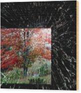 Autumn Abstraction Wood Print