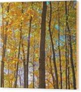 Autumn Afternoon Light Wood Print