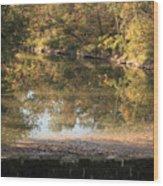 Autumn Afternoon Wood Print