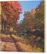 Autumn Along The Canal Wood Print