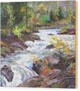 Autumn Along The Vermillion River Wood Print