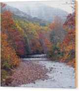 Autumn Along Williams River Wood Print by Thomas R Fletcher