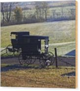 Autumn Amish Horse Buggy Wood Print