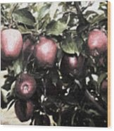 Autumn Apples - Luther Fine Art Wood Print