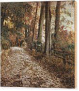 Autumn Ascending  Wood Print