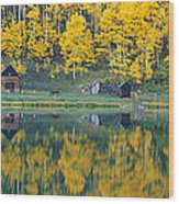 Autumn Aspens Along Route 550, North Wood Print