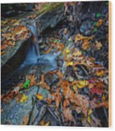 Autumn At A Mountain Stream Wood Print