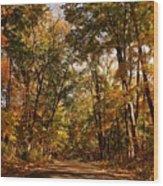 Autumn At Audubon Wood Print