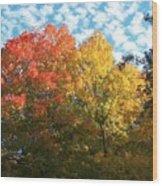 Autumn At Beaver Dam Wood Print