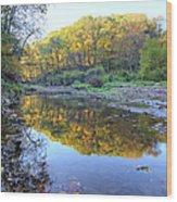 Autumn At Brush 2 Wood Print