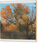 Autumn At Bull Run Wood Print