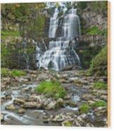 Autumn At Chittenango Falls Wood Print