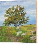 Autumn At Gettysburg Wood Print