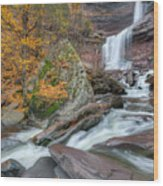Autumn At Kaaterskill Falls Wood Print