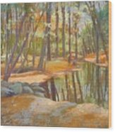 autumn at Kenoza Wood Print