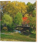 Autumn At Lafayette Park Bridge Landscape Wood Print