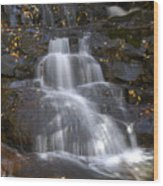 Autumn At Laurel Falls Wood Print