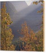 Autumn At Logan Pass Wood Print