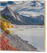 Autumn At Medicine Lake Wood Print