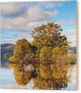 Autumn At Milarrochy Bay Wood Print