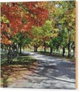 Autumn At Oatlands Lane Wood Print
