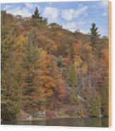 Autumn At Pink Lake Wood Print