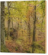 Autumn At Rim Rock Wood Print