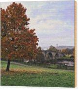 Autumn At Stirling Bridge Wood Print