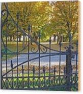Autumn At The Gates Of Lafayette Park Portrait Wood Print