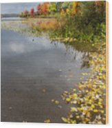 Autumn At The Lake In Nh Wood Print