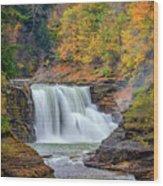 Autumn At The Lower Falls Wood Print by Rick Berk