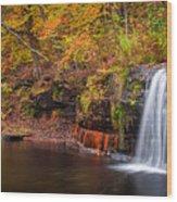 Autumn At Wolf Creek Falls Wood Print