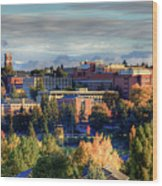 Autumn At Wsu Wood Print by David Patterson