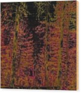 Autumn Aura Wood Print
