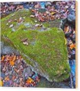 Autumn B 2015 115 Wood Print