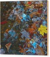 Autumn B 2015 121 Wood Print