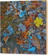 Autumn B 2015 123 Wood Print