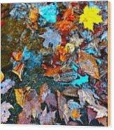 Autumn B 2015 124 Wood Print