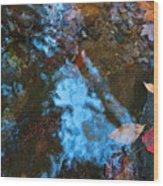 Autumn B 2015 131 Wood Print