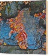Autumn B 2015 182 Wood Print