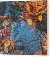 Autumn B 2015 183 Wood Print