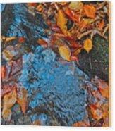 Autumn B 2015 185 Wood Print