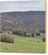 Autumn Bales Wood Print by Jan Amiss Photography