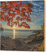 Autumn Bay Near Shovel Point Wood Print