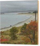 Autumn Beachcombers  Wood Print