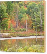 Autumn Beaver Pond Wood Print