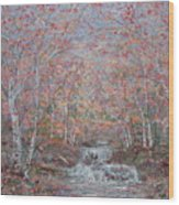 Autumn Birch Trees. Wood Print