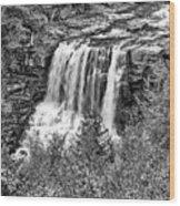 Autumn Blackwater Falls Bw Wood Print