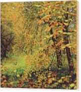 Autumn Bliss Of Color Wood Print